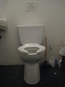 The Stone toilet