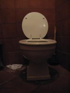 Smoke toilet