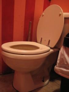Caffe Vivaldi women's toilet