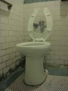 Silvana toilet